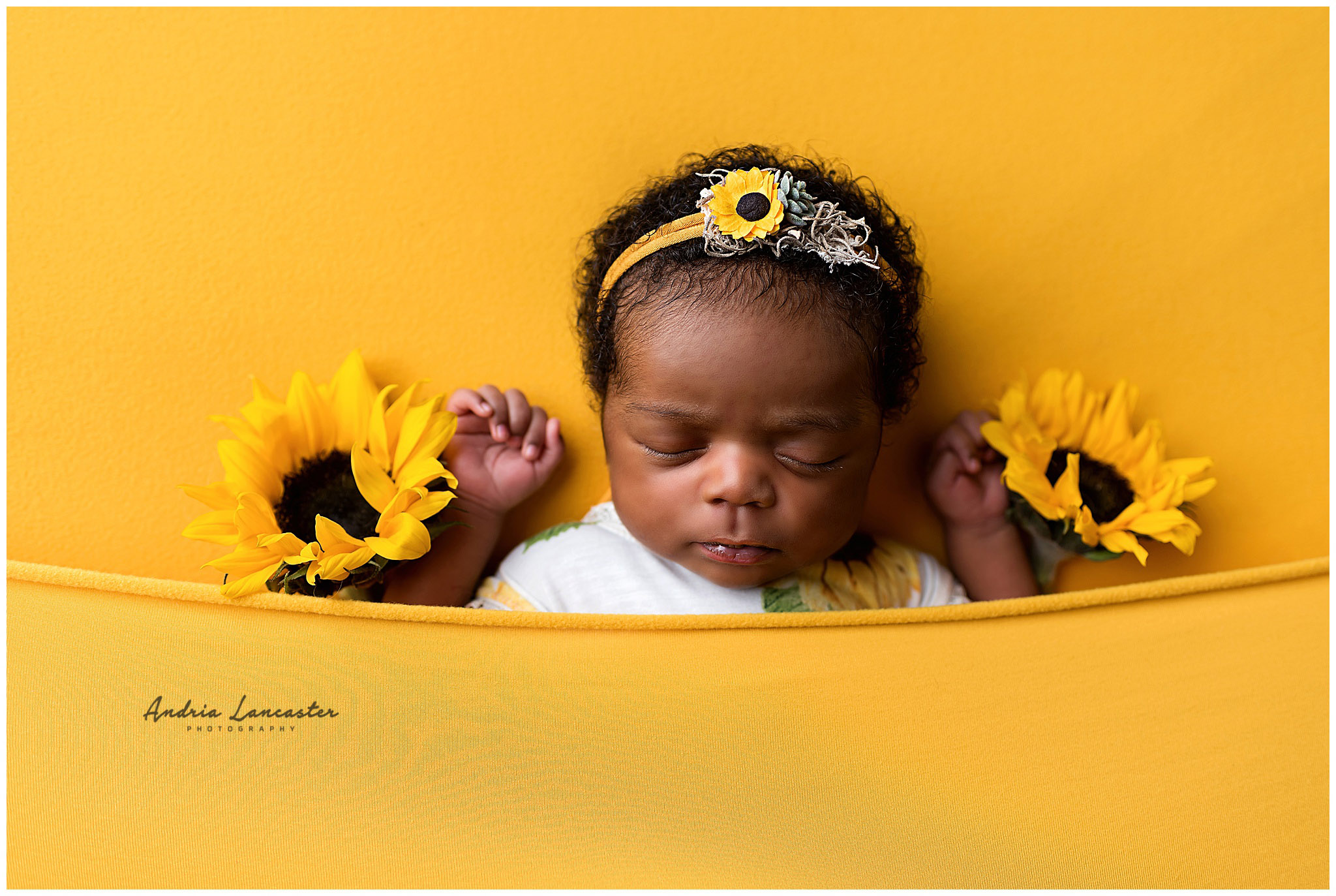 sunflowers with baby laying down face up